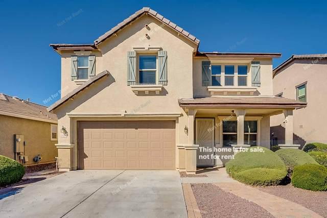 3438 E Michelle Way, Gilbert, AZ 85234 (MLS #6042036) :: Revelation Real Estate