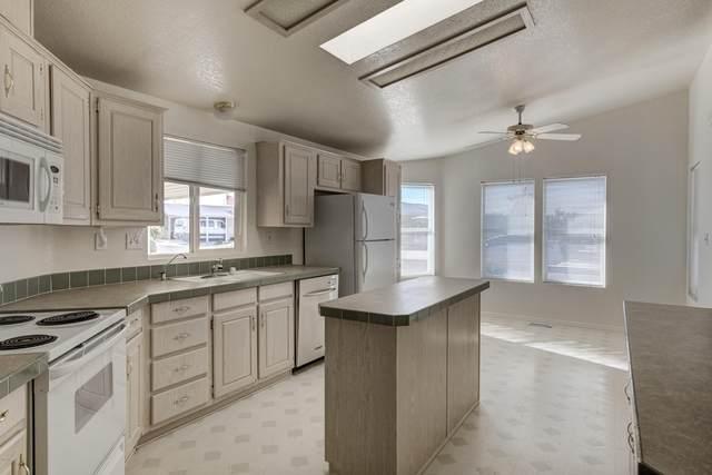 8500 E Southern Avenue #141, Mesa, AZ 85201 (MLS #6042061) :: Conway Real Estate