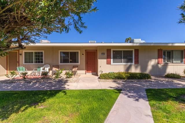 13694 N Newcastle Drive, Sun City, AZ 85351 (MLS #6042077) :: Conway Real Estate