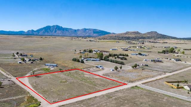 2599 W Willow Breeze Road, Chino Valley, AZ 86323 (MLS #6042093) :: The W Group