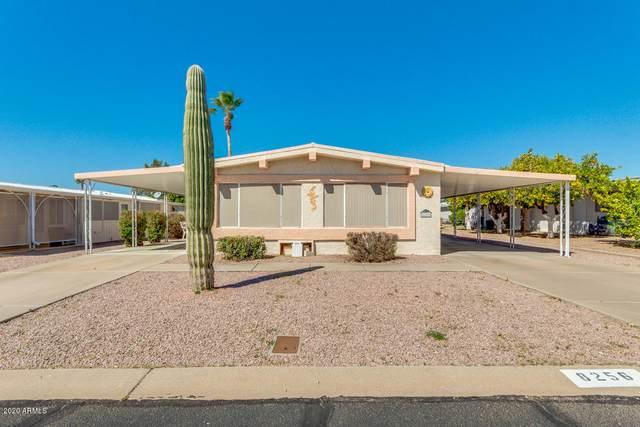8256 E Dutchman Drive, Mesa, AZ 85208 (MLS #6042144) :: Brett Tanner Home Selling Team