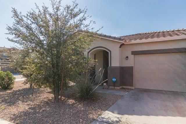 8118 S 23RD Drive, Phoenix, AZ 85041 (MLS #6042155) :: neXGen Real Estate