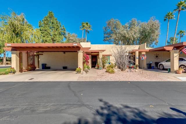 507 S Sand Verbena Way, Mesa, AZ 85208 (MLS #6042162) :: The Property Partners at eXp Realty