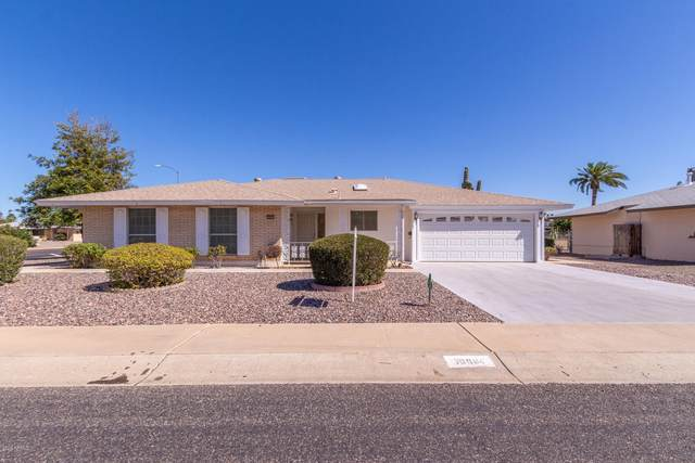 10901 W Saratoga Circle, Sun City, AZ 85351 (MLS #6042185) :: The W Group