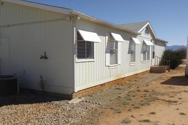 9730 E Baileys Trail, Hereford, AZ 85615 (MLS #6042194) :: Yost Realty Group at RE/MAX Casa Grande