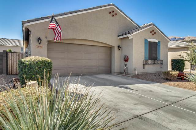 12105 W Tether Trail, Peoria, AZ 85383 (MLS #6042217) :: The Laughton Team