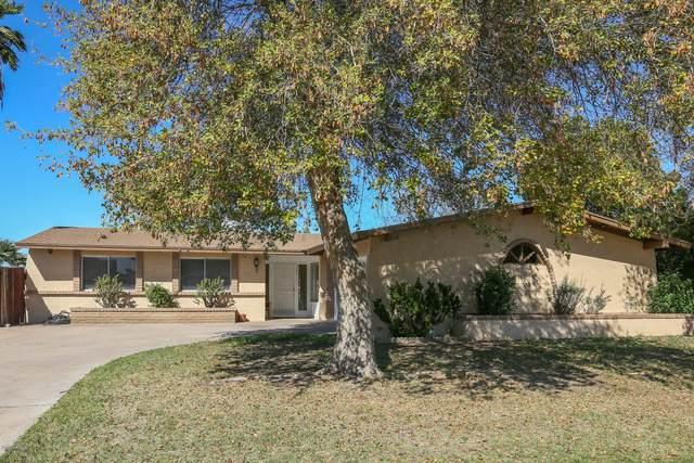 2304 W Catalina Avenue, Mesa, AZ 85202 (MLS #6042230) :: BIG Helper Realty Group at EXP Realty