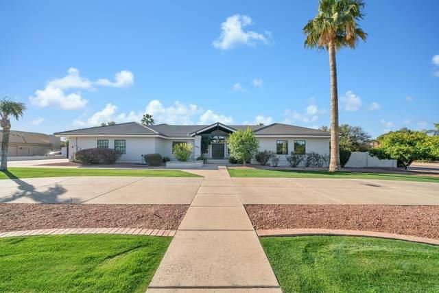 3917 E June Street, Mesa, AZ 85205 (MLS #6042239) :: BIG Helper Realty Group at EXP Realty