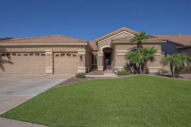 3262 E Jacinto Avenue, Mesa, AZ 85204 (MLS #6042251) :: Revelation Real Estate