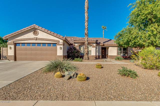 2092 E Hawken Way, Chandler, AZ 85286 (MLS #6042258) :: Santizo Realty Group