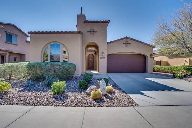 13671 W Jesse Red Drive, Peoria, AZ 85383 (MLS #6042363) :: The Laughton Team