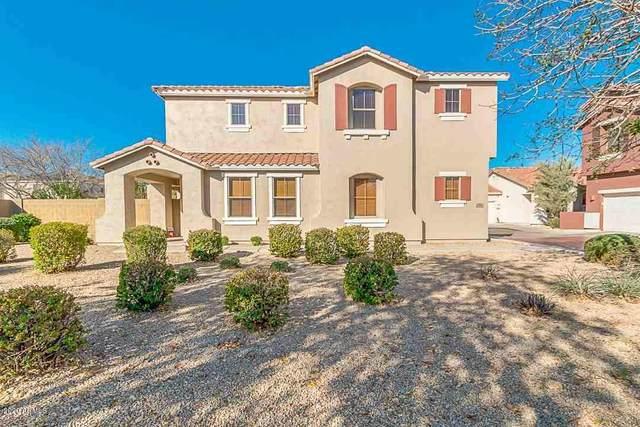 874 S Porter Street, Gilbert, AZ 85296 (MLS #6042392) :: Santizo Realty Group