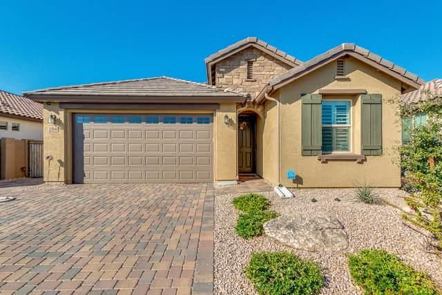 15646 N 109TH Avenue, Sun City, AZ 85351 (MLS #6042432) :: The W Group
