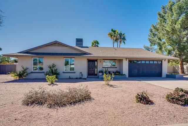 5049 E Paradise Drive, Scottsdale, AZ 85254 (MLS #6042446) :: The Kenny Klaus Team