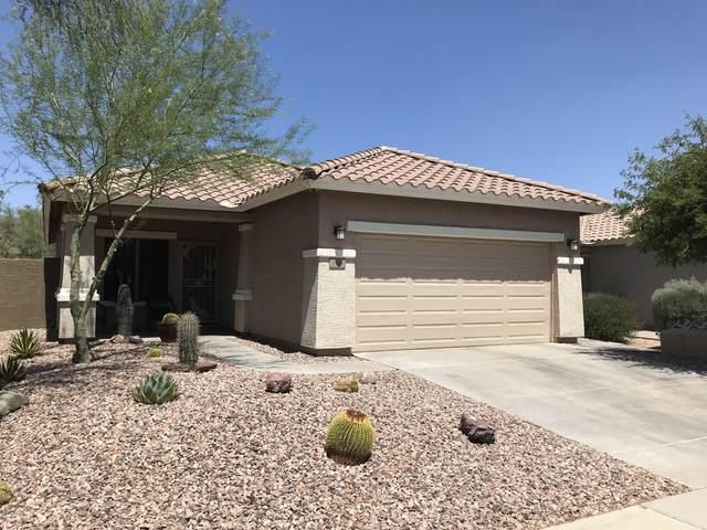 3466 W Webster Court, Anthem, AZ 85086 (MLS #6042535) :: Conway Real Estate