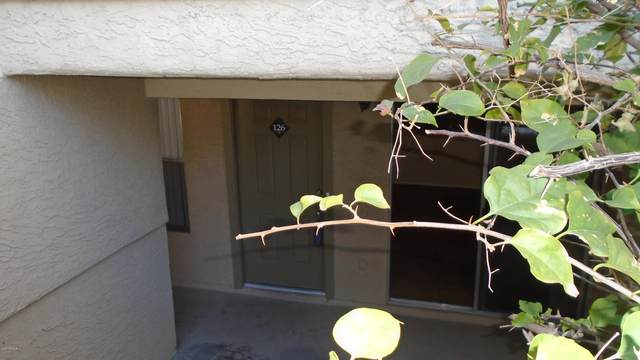 1331 W Baseline Road #126, Mesa, AZ 85202 (MLS #6042543) :: Lifestyle Partners Team