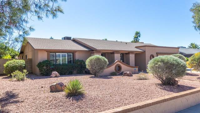 4409 E Sheena Drive, Phoenix, AZ 85032 (MLS #6042544) :: Kepple Real Estate Group