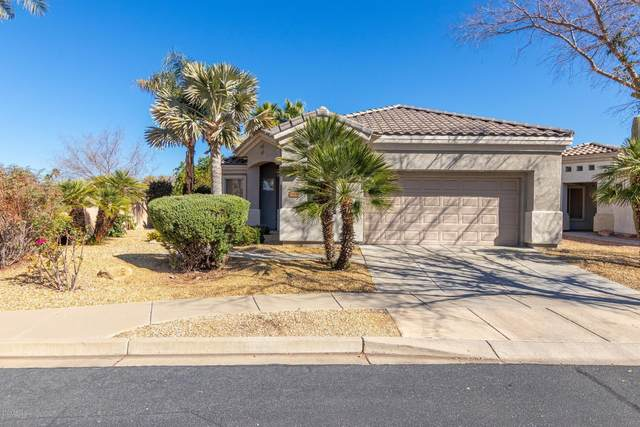 21033 N 70TH Drive, Glendale, AZ 85308 (MLS #6042561) :: The Kenny Klaus Team