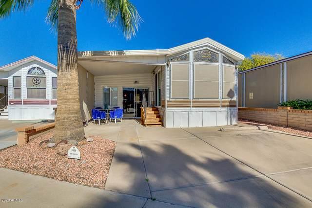 2030 W Klamath Avenue, Apache Junction, AZ 85119 (MLS #6042574) :: Lifestyle Partners Team
