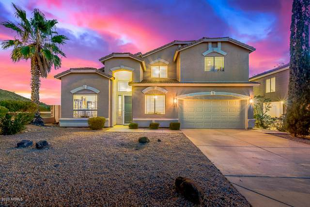 1139 E Potter Drive, Phoenix, AZ 85024 (MLS #6042578) :: The Kenny Klaus Team