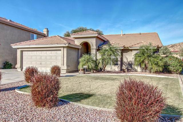 16659 S 24TH Place, Phoenix, AZ 85048 (MLS #6042595) :: The Property Partners at eXp Realty