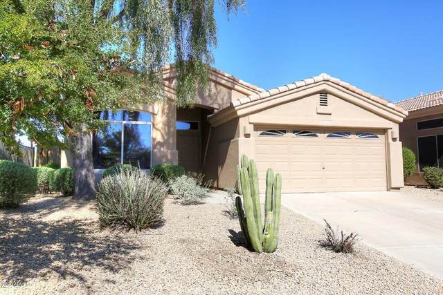 8832 E Conquistadores Drive, Scottsdale, AZ 85255 (MLS #6042603) :: Santizo Realty Group
