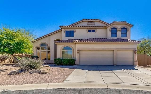 3805 N Morning Dove Circle, Mesa, AZ 85207 (MLS #6042625) :: Howe Realty