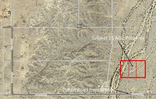 209XX W Dale Lane, Wittmann, AZ 85361 (MLS #6042643) :: Yost Realty Group at RE/MAX Casa Grande