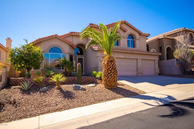 807 E Hiddenview Drive, Phoenix, AZ 85048 (MLS #6042650) :: Brett Tanner Home Selling Team