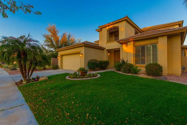 15043 N 136TH Lane, Surprise, AZ 85379 (MLS #6042675) :: Lifestyle Partners Team
