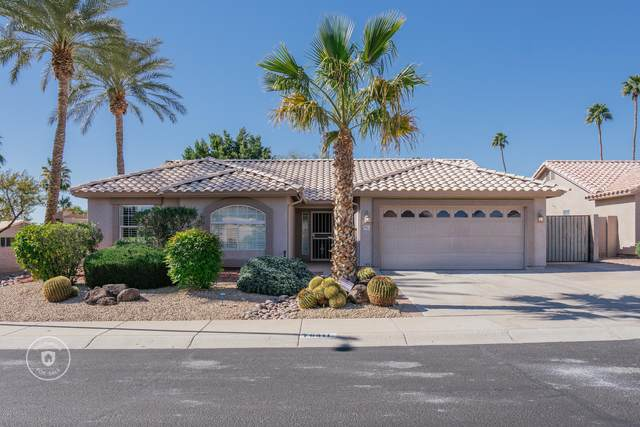 6311 W Irma Lane, Glendale, AZ 85308 (MLS #6042712) :: The Laughton Team