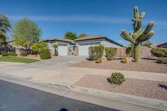 18722 E Canary Way, Queen Creek, AZ 85142 (MLS #6042749) :: The Bill and Cindy Flowers Team