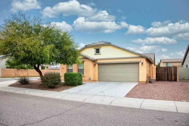 1810 W Sawtooth Way, Queen Creek, AZ 85142 (MLS #6042754) :: The Kenny Klaus Team