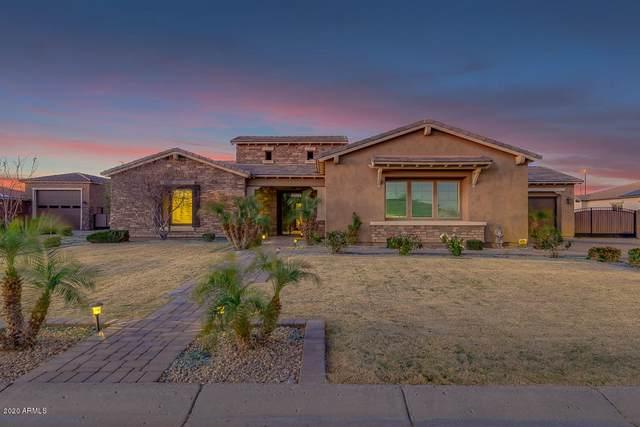 3096 E Fruitvale Court, Gilbert, AZ 85297 (MLS #6042785) :: Lux Home Group at  Keller Williams Realty Phoenix