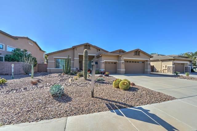 3062 S Jacob Street, Gilbert, AZ 85295 (MLS #6042805) :: Santizo Realty Group