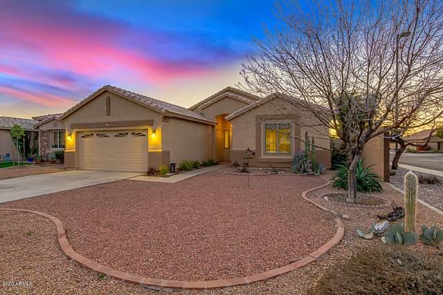 3946 S Sinova Avenue, Gilbert, AZ 85297 (MLS #6042814) :: The Bill and Cindy Flowers Team
