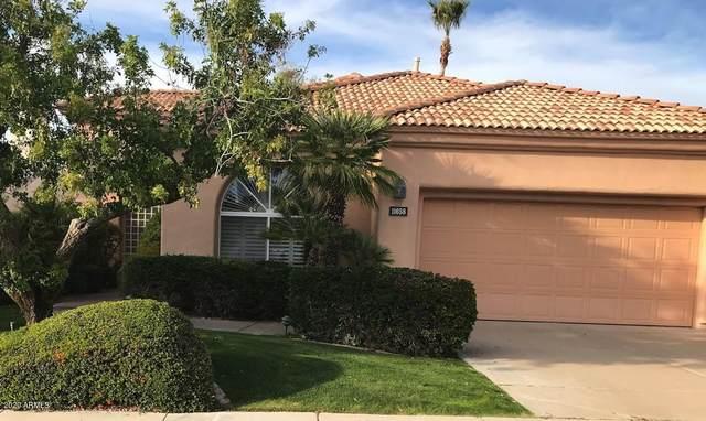 11658 E Bella Vista Drive, Scottsdale, AZ 85259 (MLS #6042815) :: The Kenny Klaus Team
