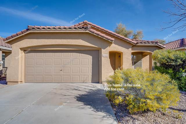 2800 W Yellow Peak Drive, Queen Creek, AZ 85142 (MLS #6042858) :: The Kenny Klaus Team