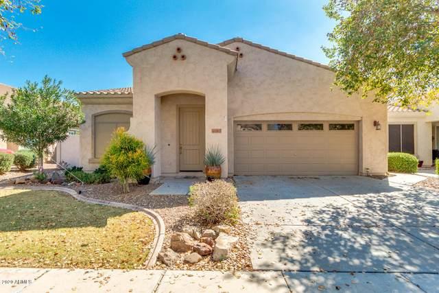4199 E Marshall Avenue, Gilbert, AZ 85297 (MLS #6042865) :: Lux Home Group at  Keller Williams Realty Phoenix