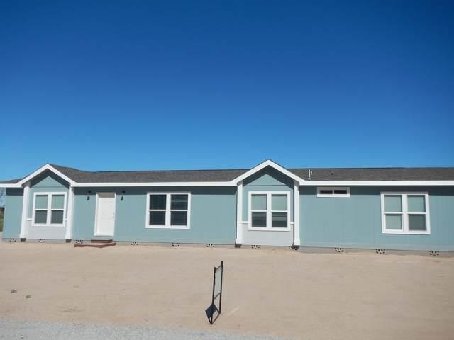 21732 W Calle Poco, Buckeye, AZ 85326 (MLS #6042869) :: Conway Real Estate