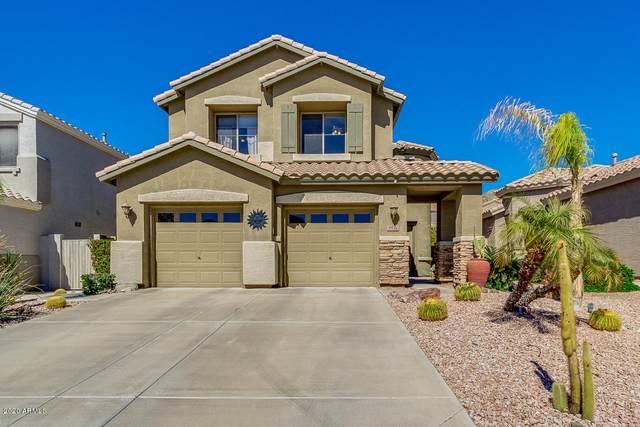 2936 W Glenhaven Drive, Phoenix, AZ 85045 (MLS #6042874) :: Lifestyle Partners Team