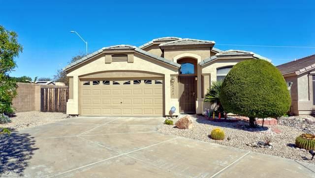2404 E Morrow Drive, Phoenix, AZ 85050 (MLS #6042885) :: Lifestyle Partners Team
