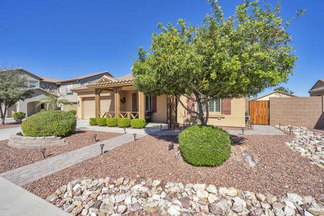 16786 W Jefferson Street, Goodyear, AZ 85338 (MLS #6042952) :: Yost Realty Group at RE/MAX Casa Grande
