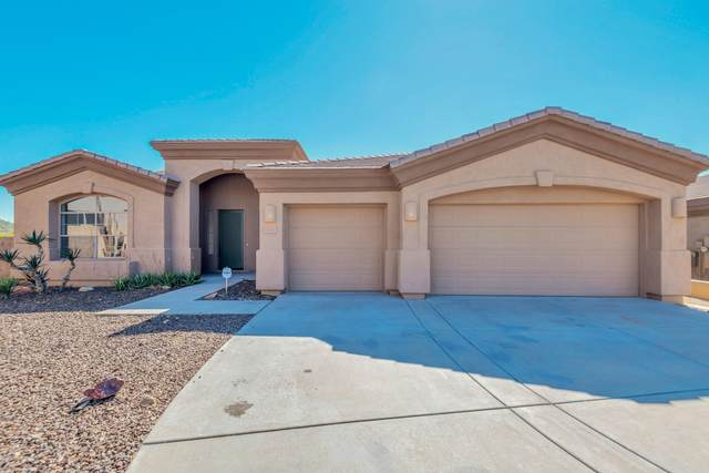 11025 N 138TH Way, Scottsdale, AZ 85259 (MLS #6043015) :: The Kenny Klaus Team