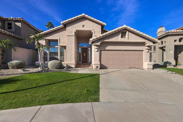 15606 S 7TH Place, Phoenix, AZ 85048 (MLS #6043046) :: The Kenny Klaus Team