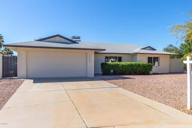 14620 N 37TH Avenue, Phoenix, AZ 85053 (MLS #6043096) :: Santizo Realty Group