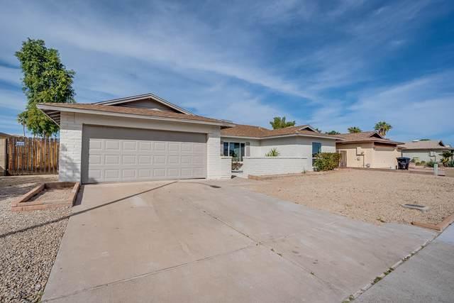 5616 W Redfield Road, Glendale, AZ 85306 (MLS #6043122) :: Lucido Agency