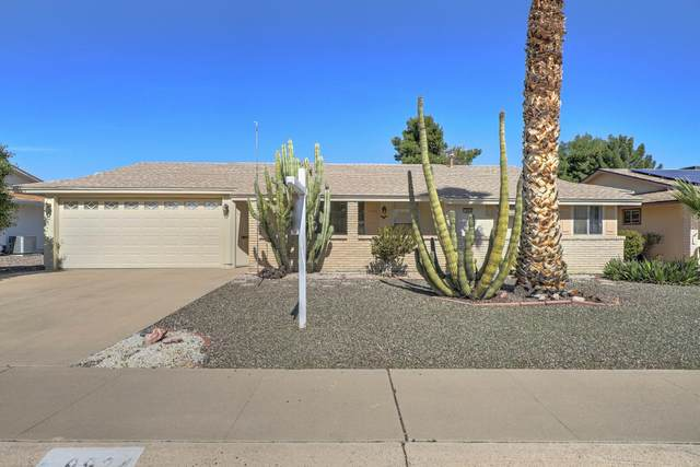 9924 W Cumberland Drive, Sun City, AZ 85351 (MLS #6043166) :: Keller Williams Realty Phoenix