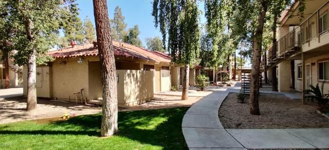 2220 W Dora Street #215, Mesa, AZ 85201 (MLS #6043207) :: Yost Realty Group at RE/MAX Casa Grande