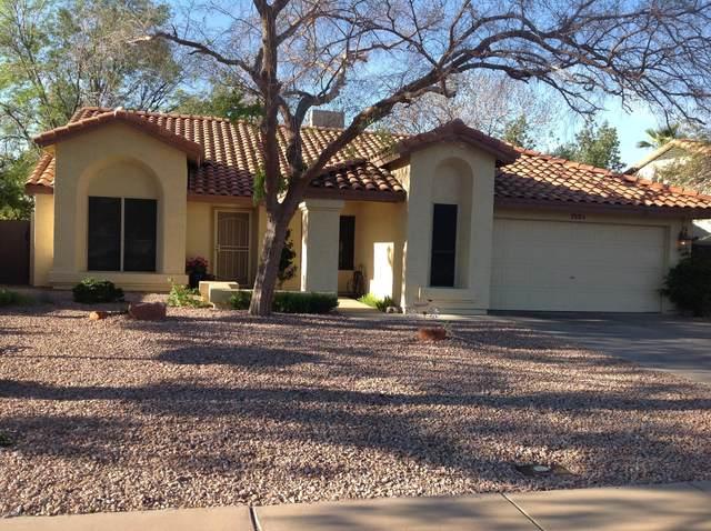 7151 W Corrine Drive, Peoria, AZ 85381 (MLS #6043244) :: Revelation Real Estate